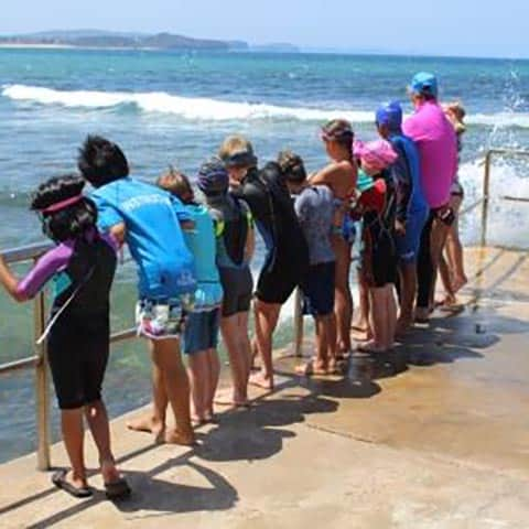 Swim & Survive Watching waves